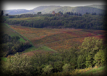 Cinque Terre & Tuscany